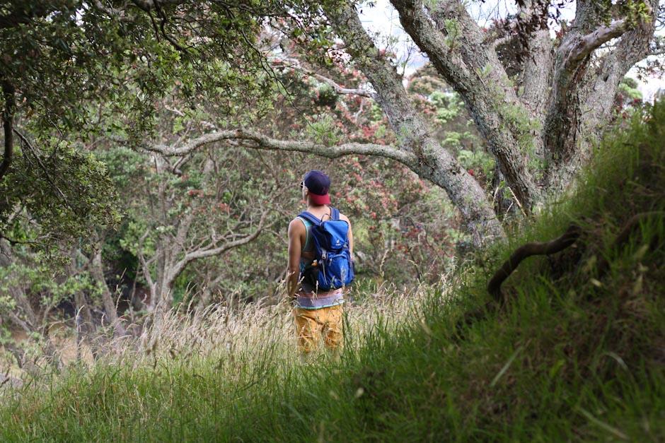 Auf dem Mount Eden, Auckland