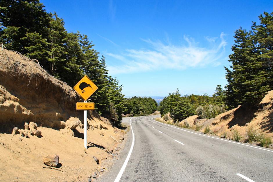 Kiwi Crossing, Verkehrsschild im Tongariro-Nationalpark