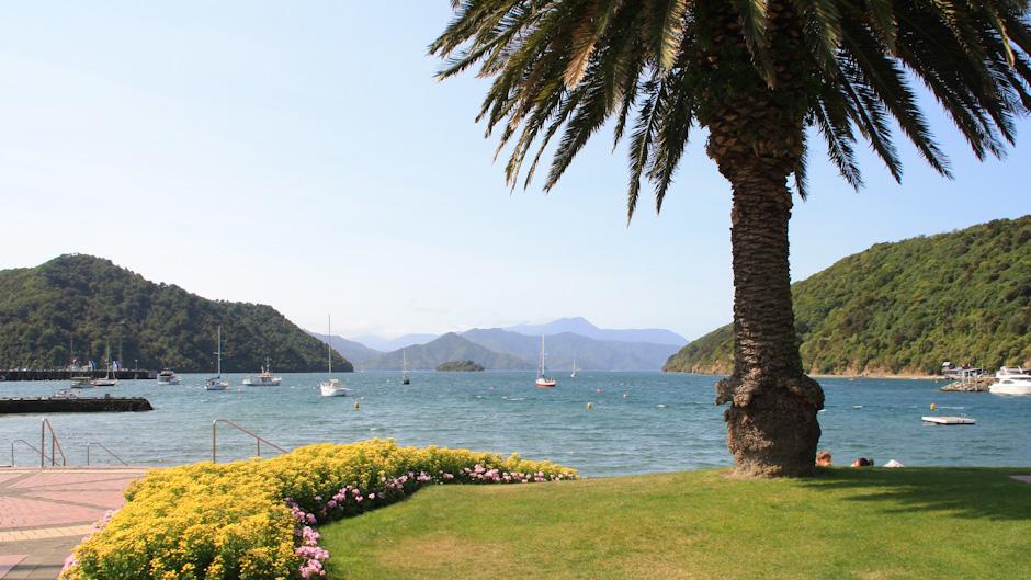 Blick auf die Bucht, Picton Harbour