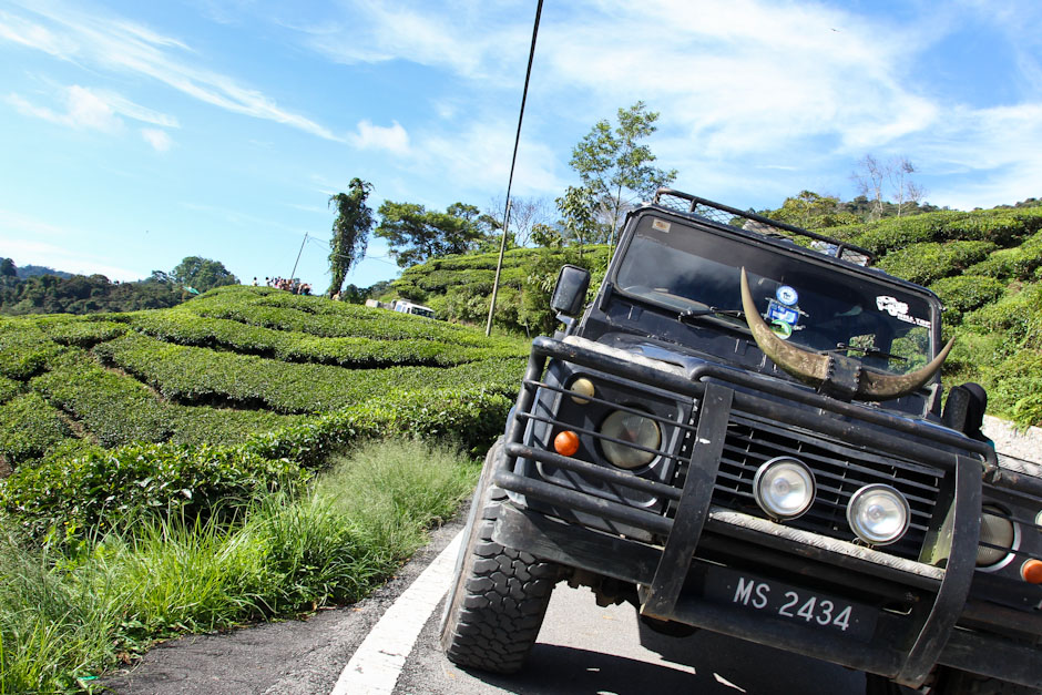 Landrovertour durch die Teeplantagen, Cameron Highlands