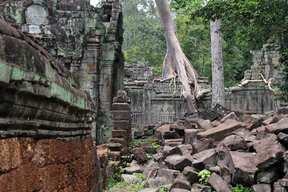 Die Tempel von Angkor, Siem Reap