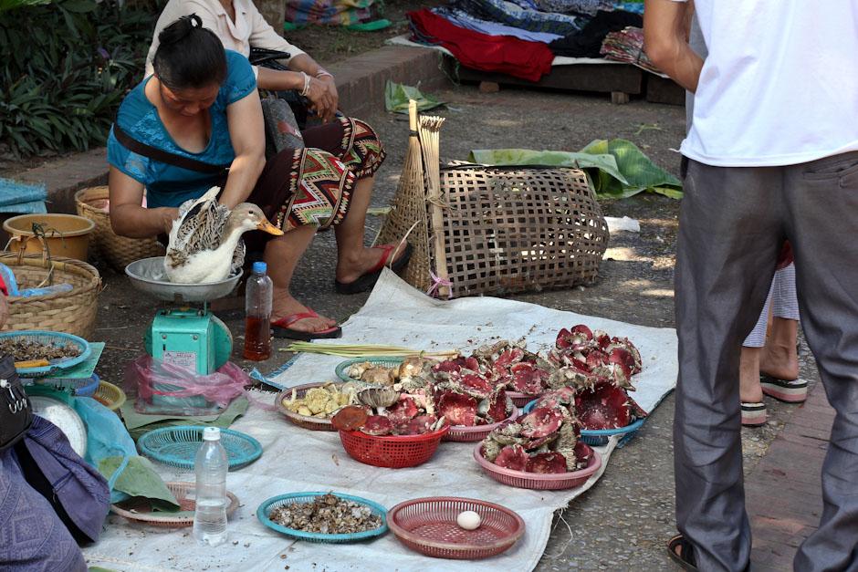 Der Morgenmarkt in Luang Prabang, Laos