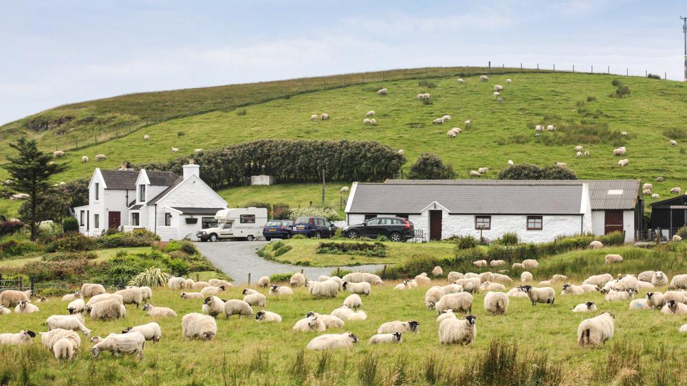 Schafsfarm, Isle of Skye