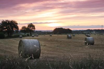 Agriturismo Nerbona, Toskana, Italien